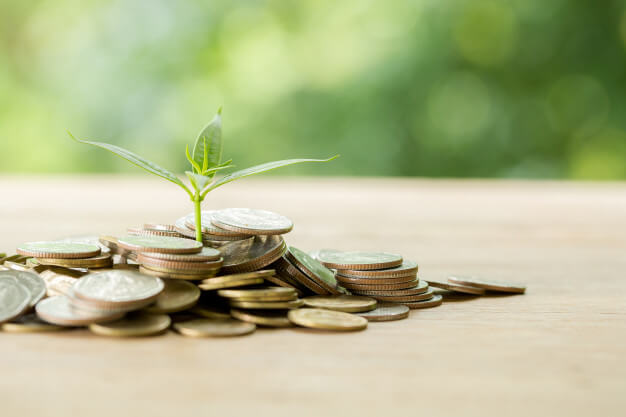 viver de renda semeando