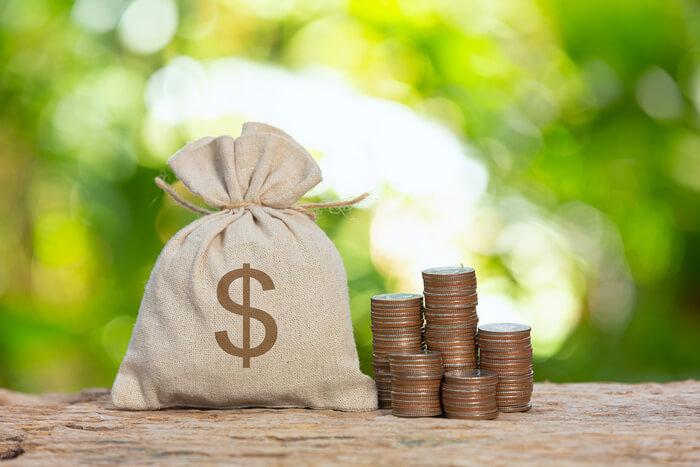dividendos saco dinheiro moedas
